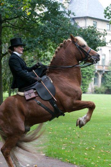side saddle